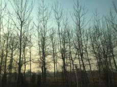 北京难得的蓝色天空。